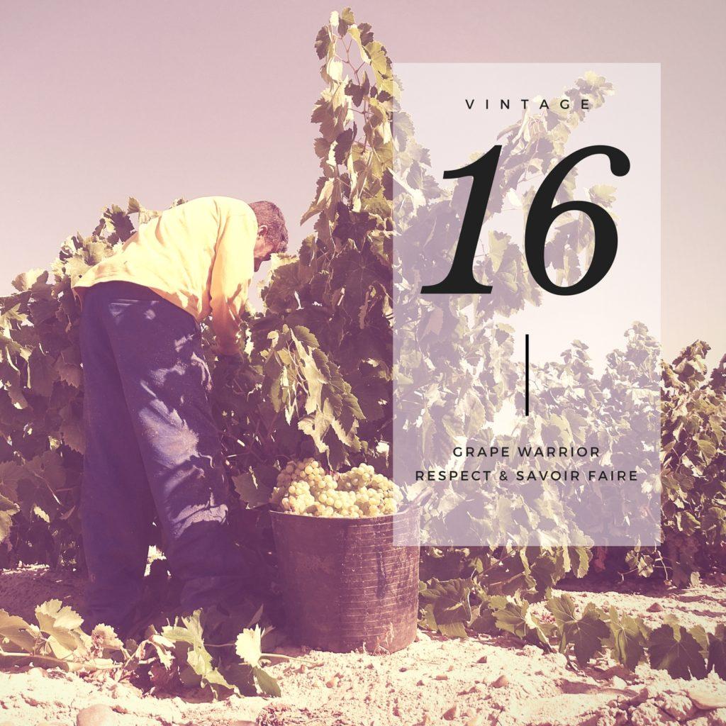 rueda-emporio-wines-3