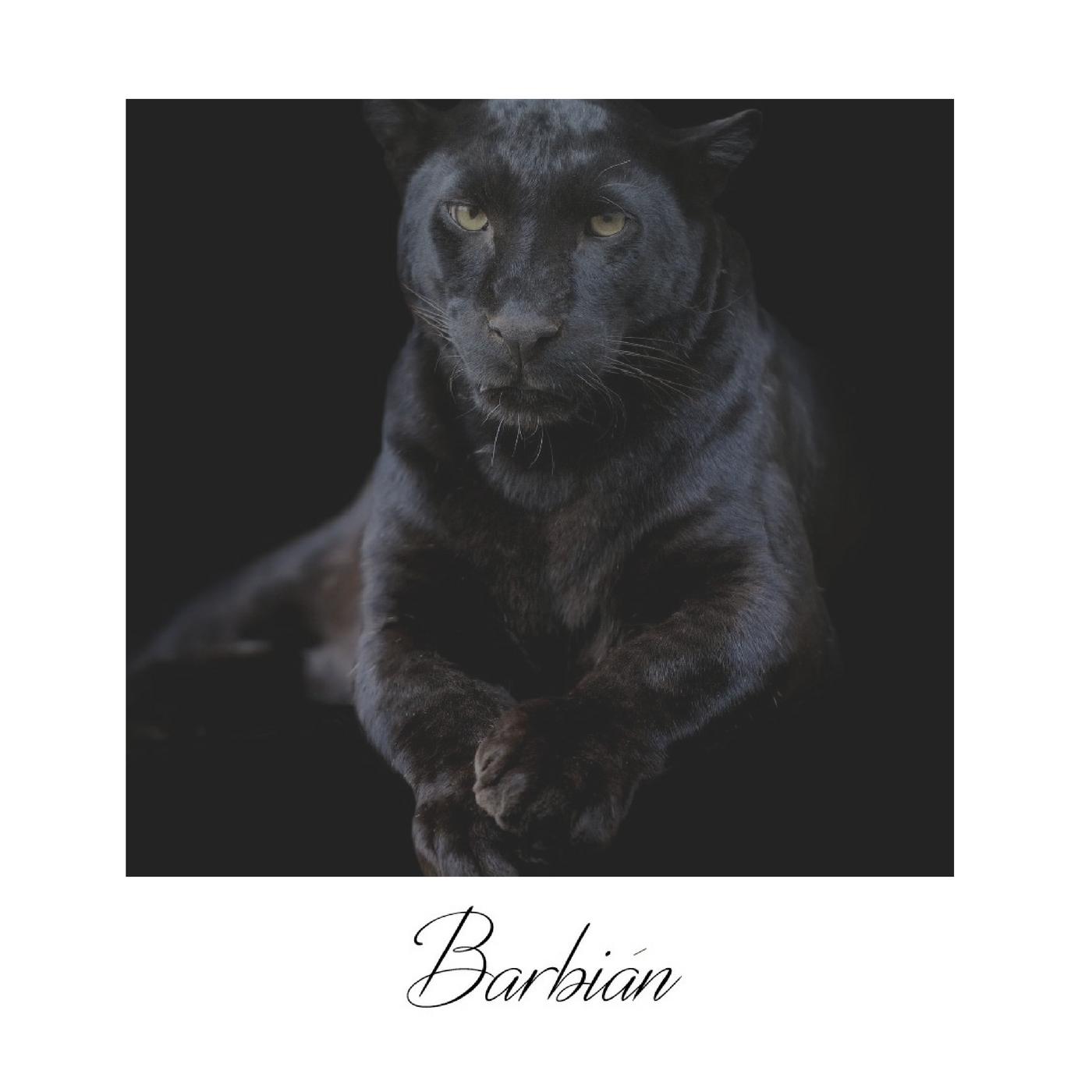 BARBIAN